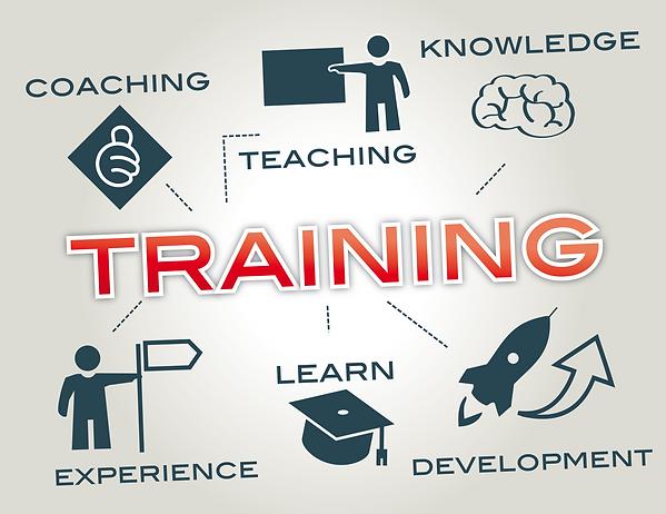 Training Image.png