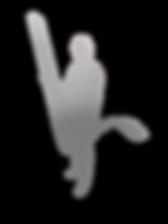 Mothquito sistema de foils IFS, foils V, Vfoils, manga dinámica