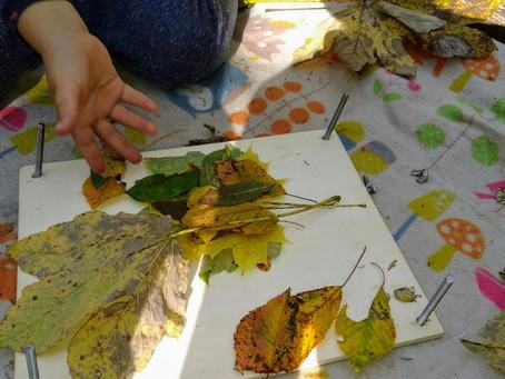 Und kam die goldene Herbsteszeit......