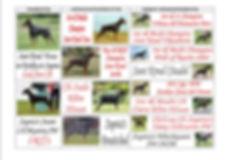 Nalapup pedigree 2 (inside).jpg