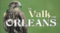 Logo Valk van Orleans.jpg