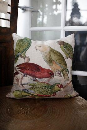 Parrot Cushion
