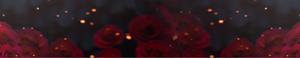 blue%252520banner%252520no%252520text_ed