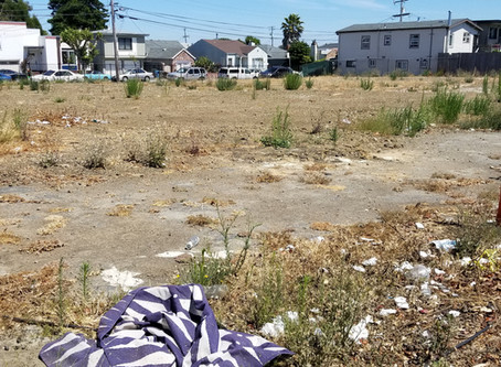Revamping vacant urban lots into greenspaces can improve mental health
