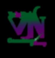 VJN itnatials logo.png
