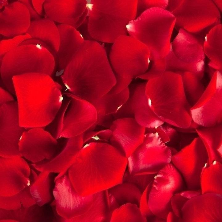 red-rose-petals_edited.jpg