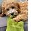 Thumbnail: HarRuffs Plush Dog Toy Bag