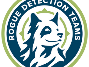 Sniffing Around the Globe: Rogue Detection Teams