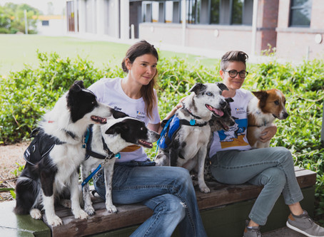 Sniffing Around the Globe: Detection Dogs for Conservation with the University of the Sunshine Coast