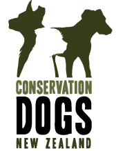 Sniffing Around the Globe: Conservation Dogs New Zealand