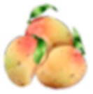 mango-local.png