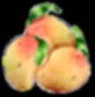 mango-local.png