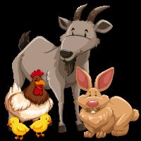 ANIMALES-DE-GRANJA.png