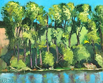 Trees along the Edge of the Pond 2020.jp