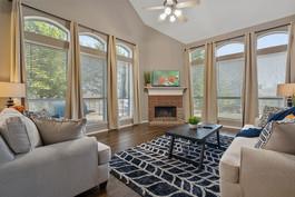 firefly uas livingroom