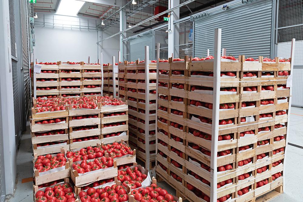 Surplus Food Australia_Yume Food Australia