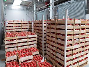 3 Surplus Food Myths We Need To Dismantle