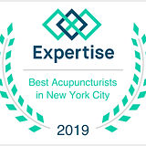 best-acupuncturist-nyc-snowxialac-expert