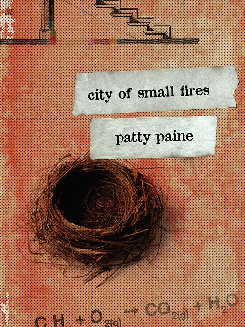 City of Small Fires by Patty Paine