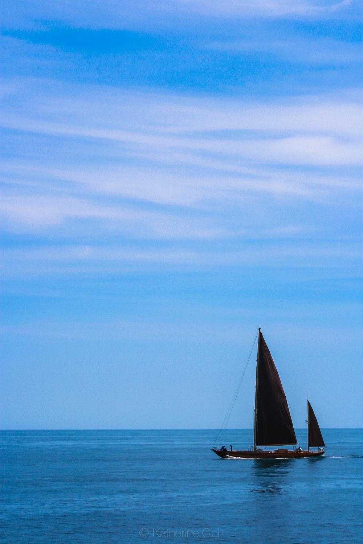 Black Sail