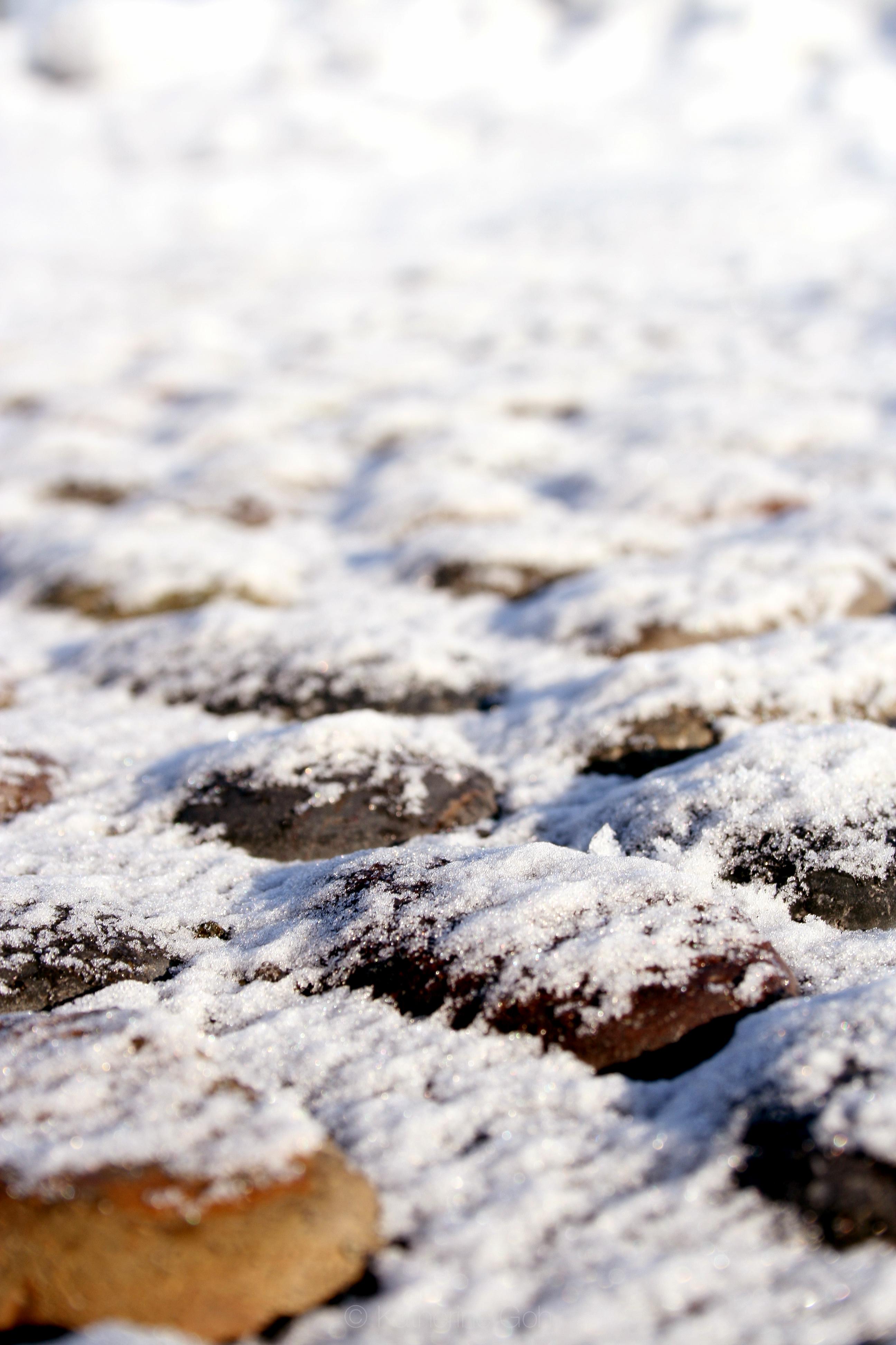 Snowed Pebbles