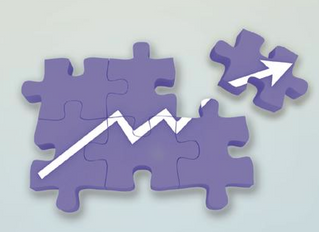What's Missing from the Growth Puzzle