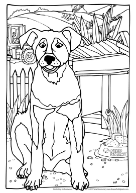 Colouring Page for Business