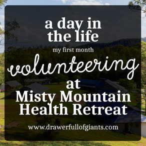 A Day in the Life - My first Month Volunteering at Misty