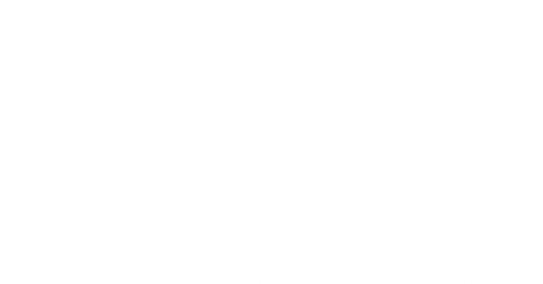 Ships-White-bkground-20%.png