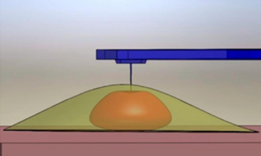 Nanoinentation of cell nucleus