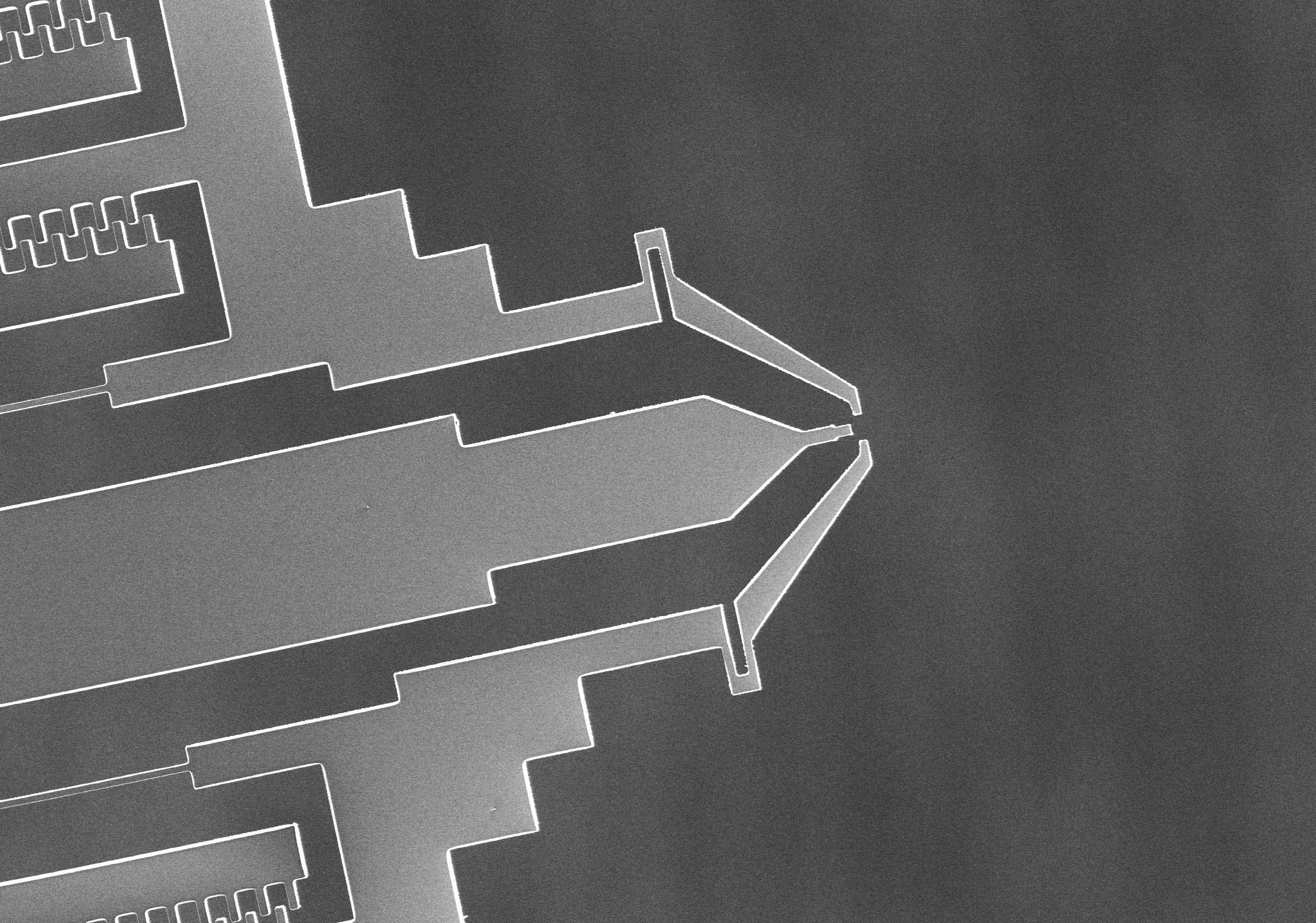 gripper tip, nano instrumentation