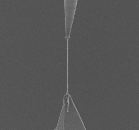 Nanowire tensile/compression testing