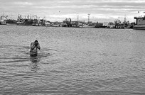 29 - IMG0029 - The Loss of Flight - The Bathers - Kalk Bay - Cape Town - 24-09-2014.jpg
