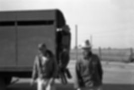 1960StilesTrip16small.jpg