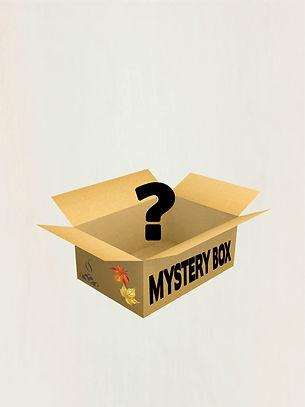 mystery-box-herfst-beyond-stories.jpg