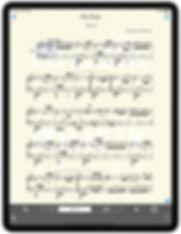 iPad-Pro-13-Portrait-11.jpg