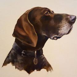 Dog commission done