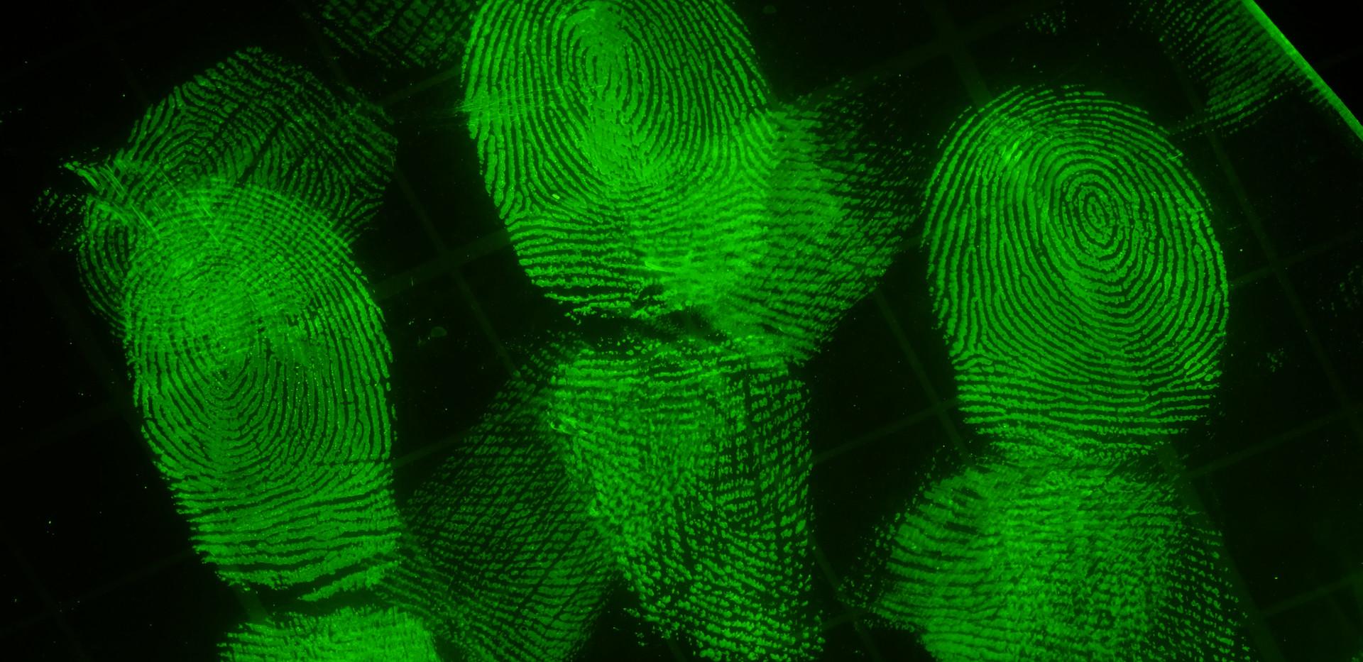 Fingerprints on Ziplock Bag