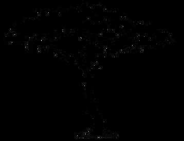 nika-logo-400px.png