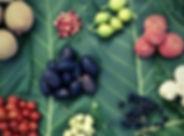 FoodConsult.jpg