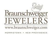 Braunschweiger-jpeg-LOGO-230x159.jpg