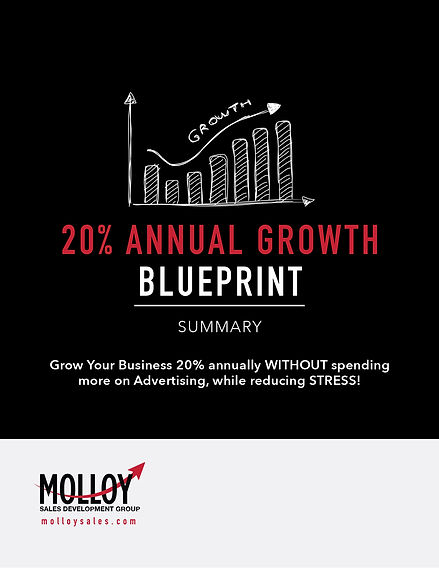 20%_Annual_Growth_Blueprint_SUMMARY_12se