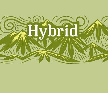 Strain_BOX_2_Hybrid.jpg