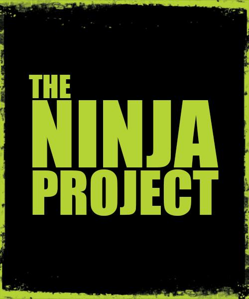 3_Ninja_Project