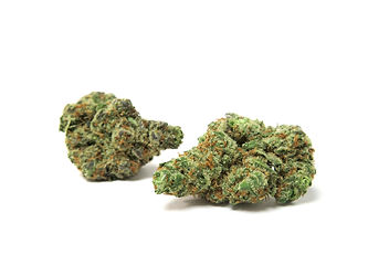 JWEEDS_Orange_Cookies_22_SMALL.jpg