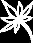 white_leaf.png