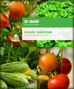1_BASF_Inscalis_Brochure