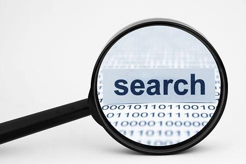 search-web.jpg