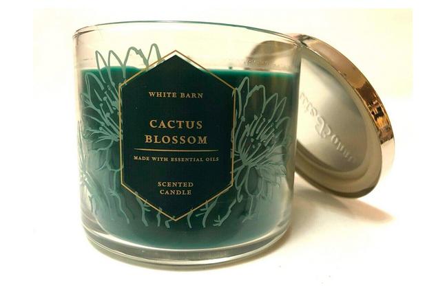 Cactus Blossom Candle