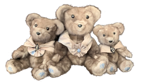 Jill's Bears .png